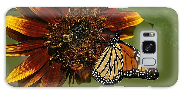 Monarch And The Bee Galaxy Case