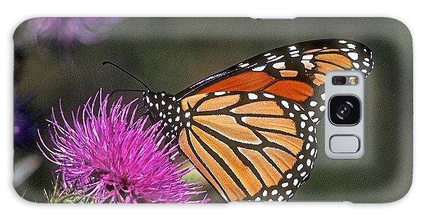 Monarch On Thistle 13f Galaxy Case by Gerry Gantt