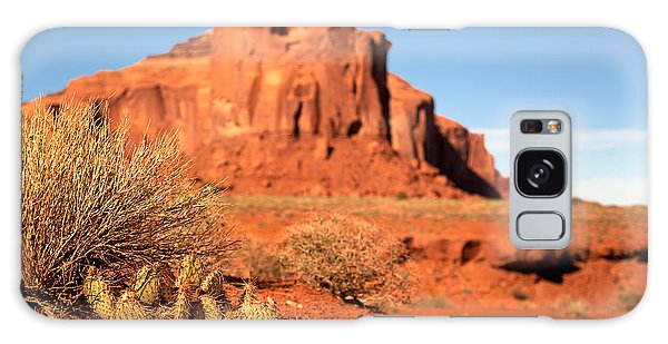 Indian Peaks Wilderness Galaxy Case - Monument Valley Cactus by Jane Rix
