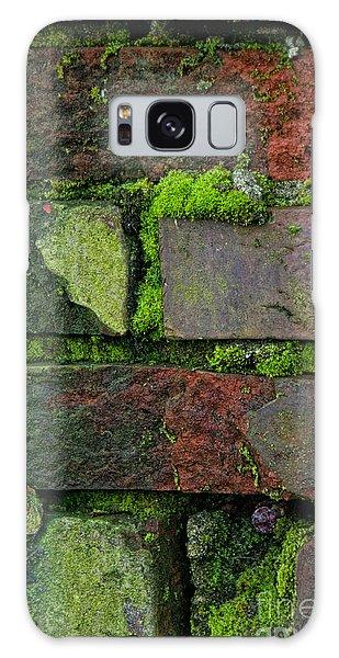 Mossy Brick Wall Galaxy Case by Carol Ailles