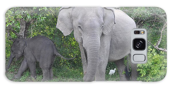 Mother Elephant And Baby Galaxy Case