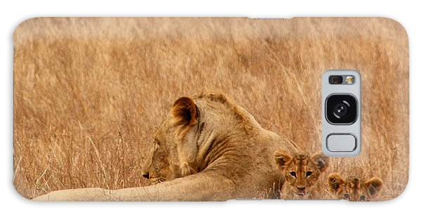 Mother Lion With Family Galaxy Case