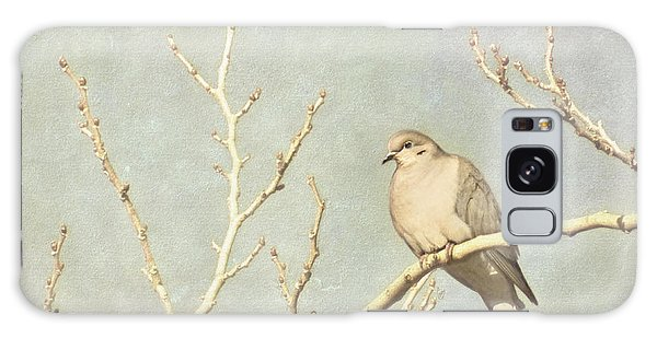 Mourning Dove In Winter Galaxy Case