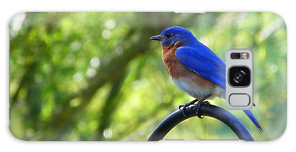 Mr Bluebird Galaxy Case