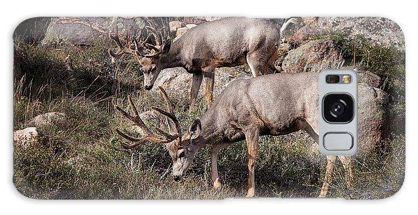 Mule Deer Bucks Galaxy Case