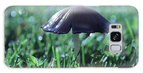 Mushroom In Morning Light Galaxy Case