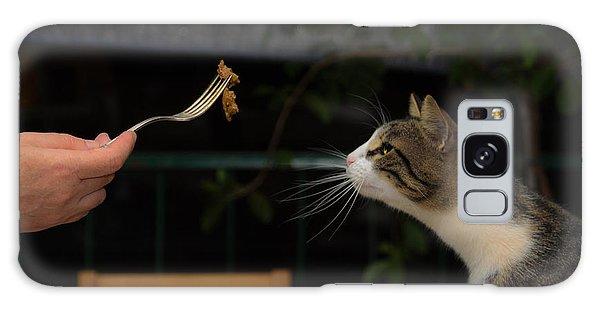 My Best Most Beloved Cat Galaxy Case
