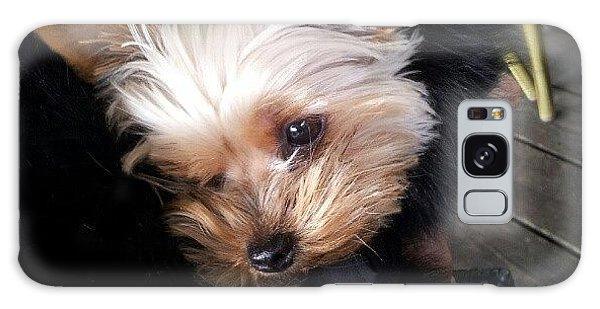 My #princess #dog #yorkie Galaxy Case