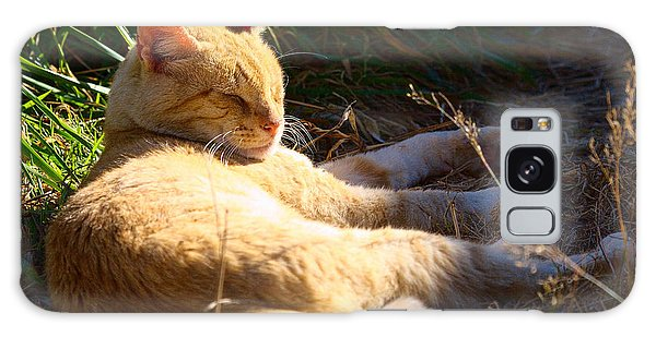 Napping Orange Cat Galaxy Case