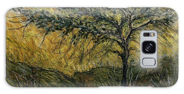 Nature Landscape Green Thorns Acacia Tree Flowers Sunset In Yellow Clouds Sky  Galaxy Case