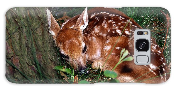 White-tailed Deer Galaxy Case - Nature's Precious Creation by Skip Willits