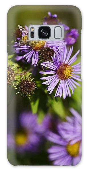 Nectar Gathering Galaxy Case