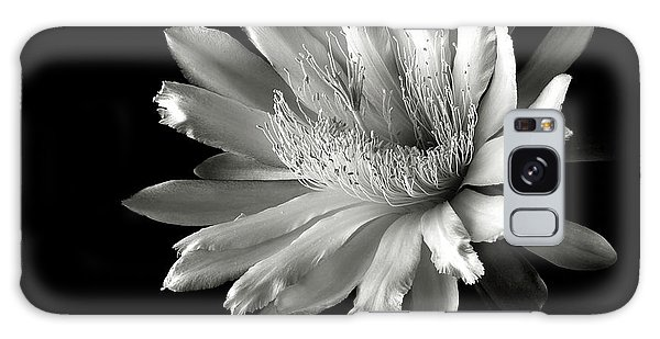 Night Blooming Cereus In Black And White Galaxy Case