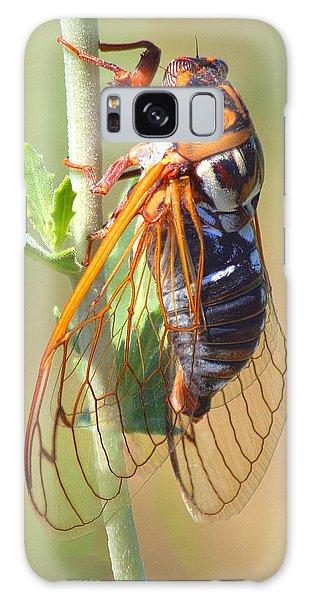 Noisy Cicada Galaxy Case by Shane Bechler