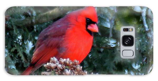 Northern Cardinal Male Galaxy Case