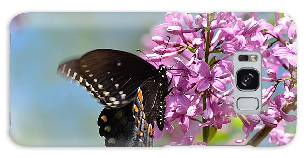 Nothing Says Spring Like Butterflies And Lilacs Galaxy Case by Lori Tambakis