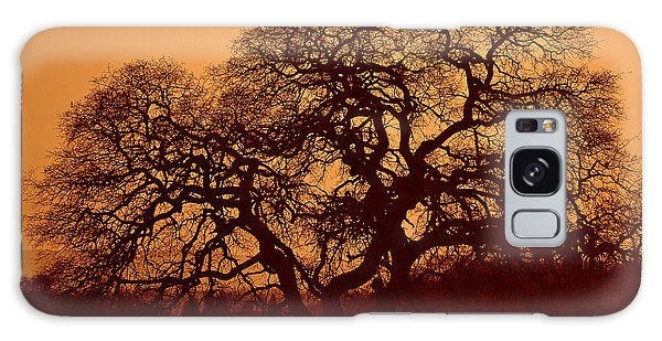 Oak Tree At Sunset Galaxy Case