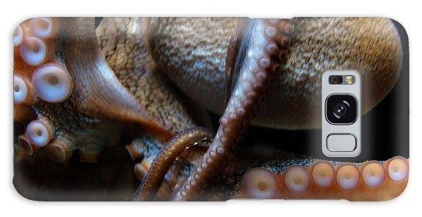 Octopus 1  Galaxy Case