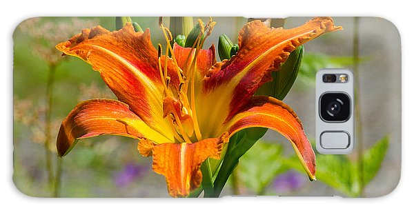 Orange Day Lily Galaxy Case by Tikvah's Hope