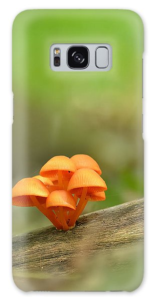 Orange Mushrooms Galaxy Case by JD Grimes