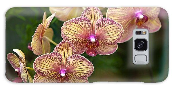 Orchid 1 Galaxy Case