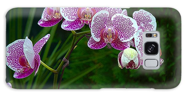 Orchid 2 Galaxy Case