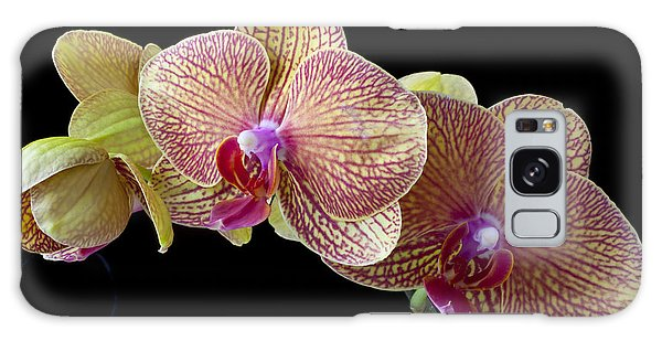Orchidaceae Galaxy Case - Orchids by Garry Gay