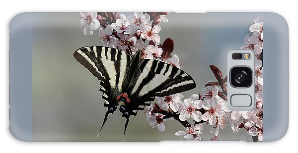 Ornamental Plum Blossoms With Zebra Swallowtail Galaxy Case