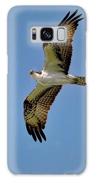 Osprey Above Galaxy Case