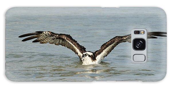 Osprey Bathing Galaxy Case