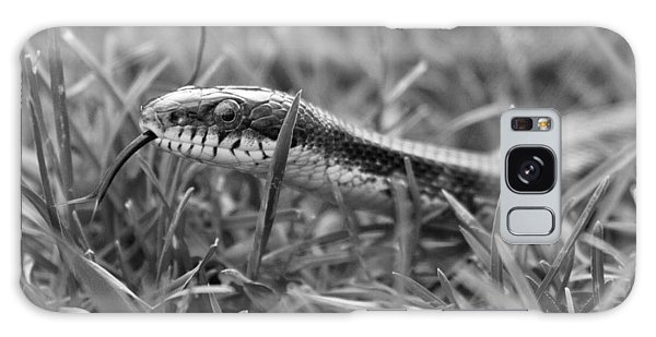 Grass Snake Galaxy Case - Out And About by Betsy Knapp