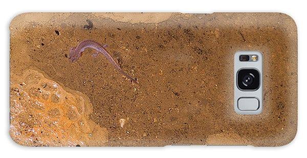 Ozark Blind Cave Salamander Galaxy S8 Case