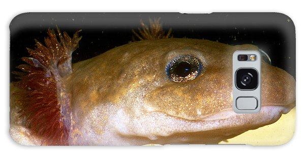 Pacific Giant Salamander Larva Galaxy Case