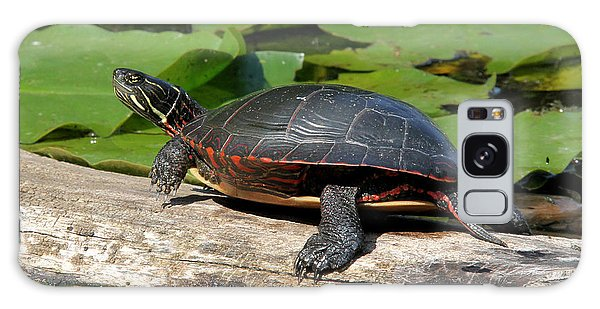 Painted Turtle On Log Galaxy Case