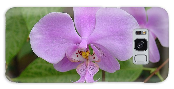 Pale Pink Orchid Galaxy Case