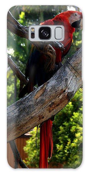 Parrot2 Galaxy Case