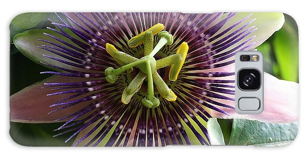 Passion Flower 2 Galaxy Case by Bruce Bley