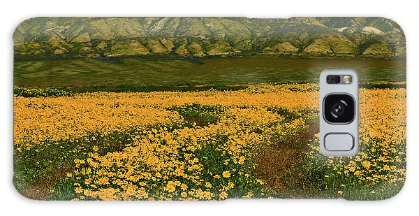 Path Through The Wildflowers Galaxy Case