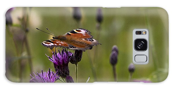 Peacock Butterfly On Knapweed Galaxy Case by Clare Bambers