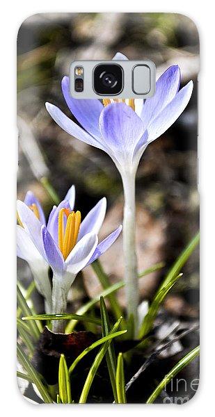 Peaking Spring Galaxy Case