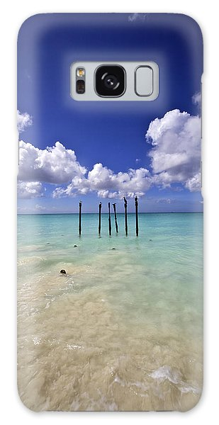 Pelicans Of Sunny Aruba Galaxy Case