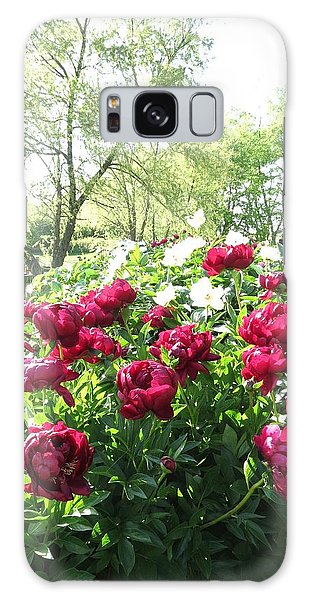 Peony Garden Path Galaxy Case by Rebecca Overton