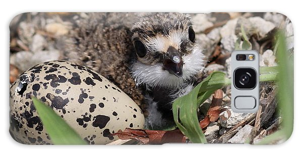 Killdeer Baby - Photo 25 Galaxy Case