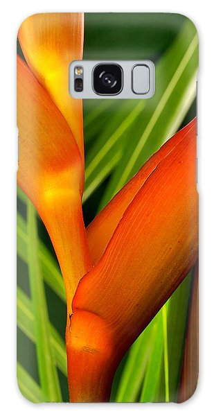 Photograph Of A Parrot Flower Heliconia Galaxy Case