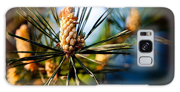 Pine Cone And Needles Galaxy Case