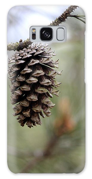 Pine Cone Galaxy Case by Deborah Hughes