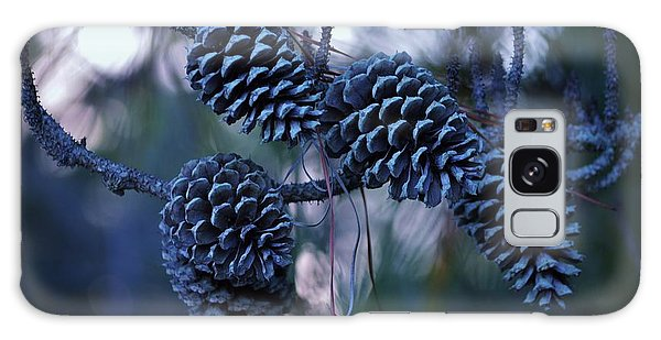 Pine Cones Galaxy Case