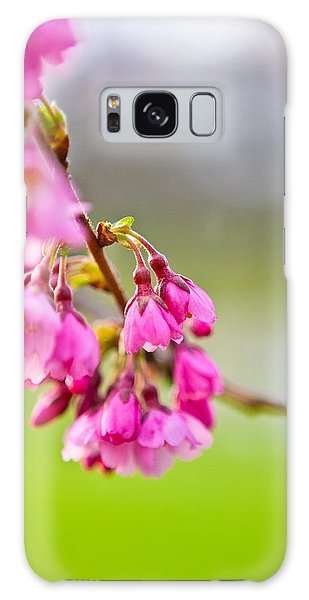 Pink Blossom Galaxy Case