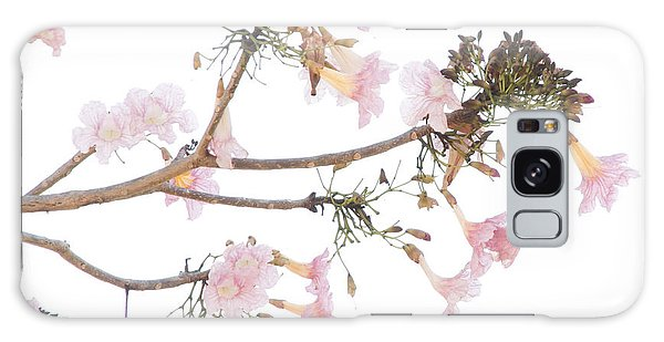 Pink Blossoms In Panama Galaxy Case