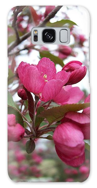 Pink Crabapple Blooms Galaxy Case by Rebecca Overton